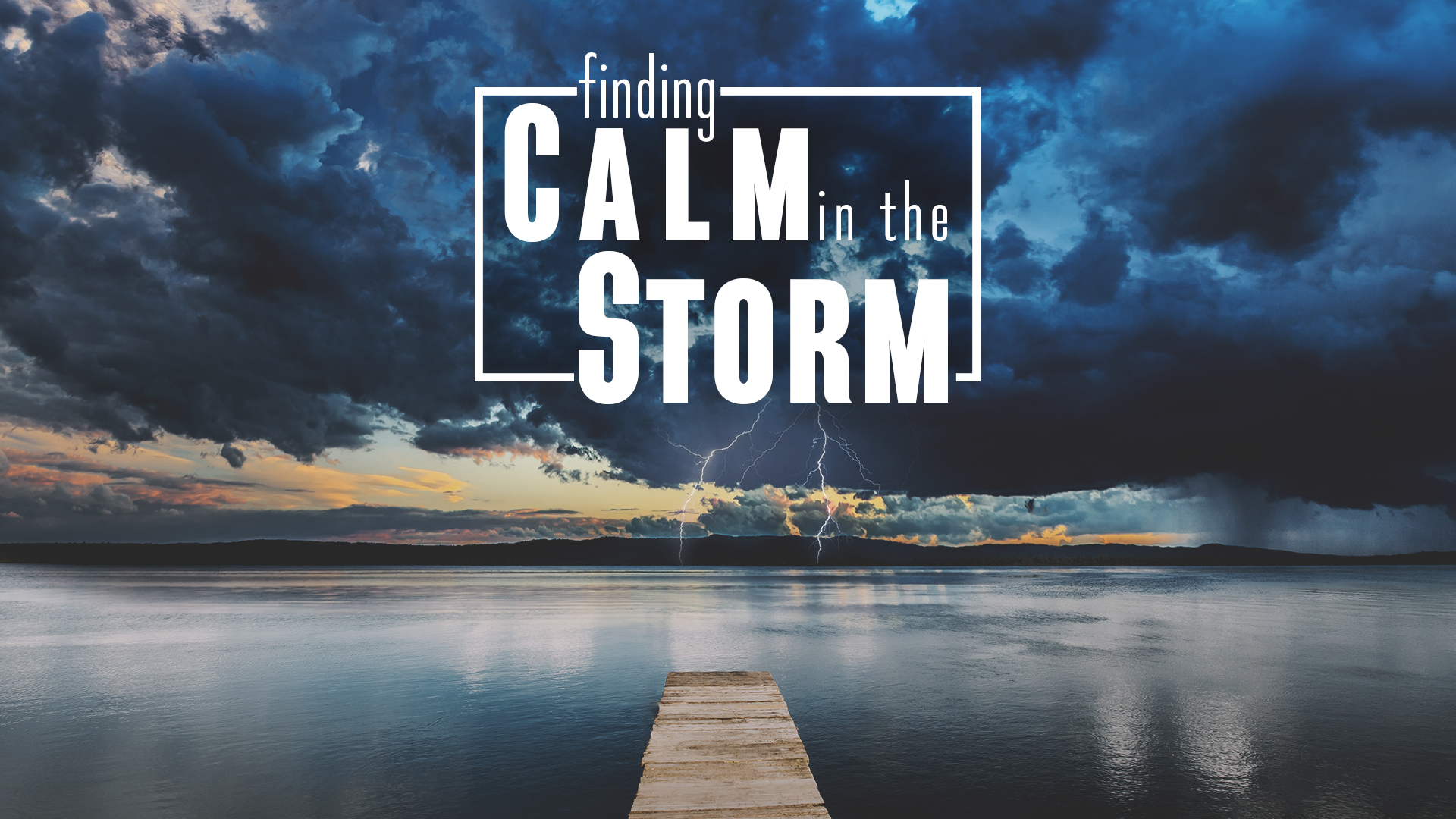 Finding Calm in the Storm