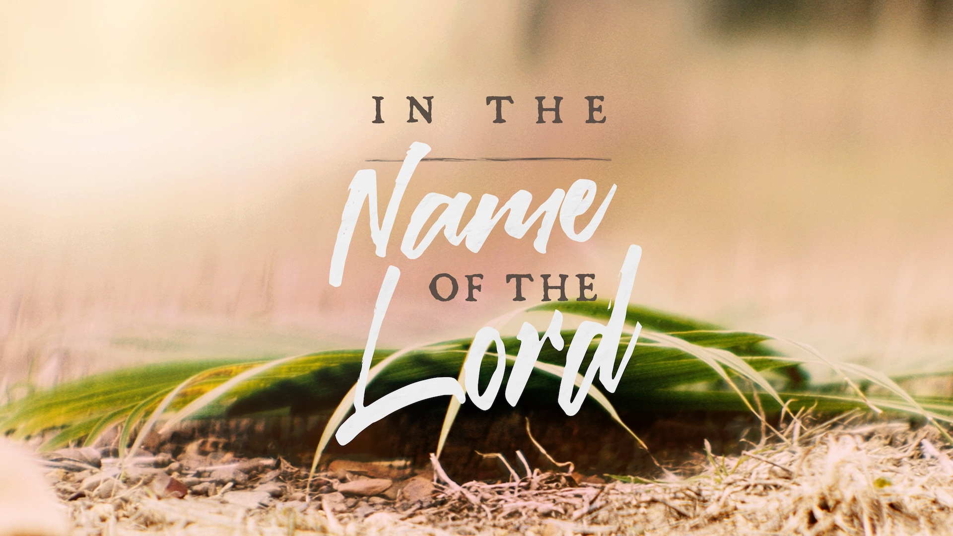 In the Name of the Lord